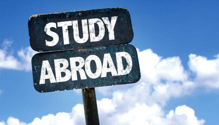 Reasons To Consider Overseas Internships